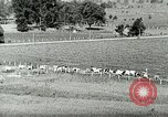 Image of a modern dairy Berea Kentucky United States USA, 1933, second 16 stock footage video 65675021250