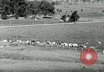 Image of a modern dairy Berea Kentucky United States USA, 1933, second 18 stock footage video 65675021250