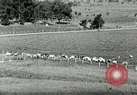 Image of a modern dairy Berea Kentucky United States USA, 1933, second 19 stock footage video 65675021250