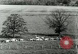 Image of a modern dairy Berea Kentucky United States USA, 1933, second 20 stock footage video 65675021250