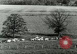 Image of a modern dairy Berea Kentucky United States USA, 1933, second 21 stock footage video 65675021250