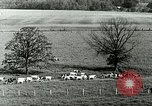 Image of a modern dairy Berea Kentucky United States USA, 1933, second 22 stock footage video 65675021250