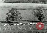 Image of a modern dairy Berea Kentucky United States USA, 1933, second 26 stock footage video 65675021250