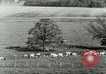 Image of a modern dairy Berea Kentucky United States USA, 1933, second 28 stock footage video 65675021250