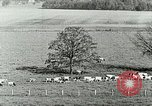 Image of a modern dairy Berea Kentucky United States USA, 1933, second 29 stock footage video 65675021250