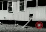 Image of poultry farm Berea Kentucky United States USA, 1933, second 23 stock footage video 65675021251