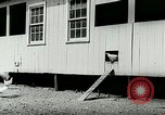 Image of poultry farm Berea Kentucky United States USA, 1933, second 24 stock footage video 65675021251