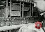 Image of poultry farm Berea Kentucky United States USA, 1933, second 33 stock footage video 65675021251