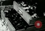 Image of poultry farm Berea Kentucky United States USA, 1933, second 61 stock footage video 65675021251