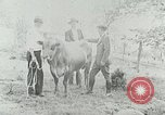 Image of dairy farm Berea Kentucky United States USA, 1933, second 32 stock footage video 65675021270
