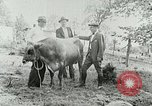 Image of dairy farm Berea Kentucky United States USA, 1933, second 33 stock footage video 65675021270
