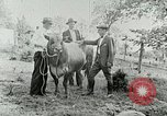 Image of dairy farm Berea Kentucky United States USA, 1933, second 35 stock footage video 65675021270