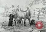 Image of dairy farm Berea Kentucky United States USA, 1933, second 36 stock footage video 65675021270