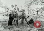 Image of dairy farm Berea Kentucky United States USA, 1933, second 39 stock footage video 65675021270
