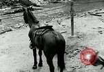 Image of Undeveloped roads Berea Kentucky United States USA, 1933, second 52 stock footage video 65675021272