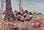 Image of Battle of Eniwetok Eniwetok Atoll Marshall Islands, 1944, second 2 stock footage video 65675021289