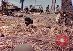 Image of Battle of Eniwetok Eniwetok Atoll Marshall Islands, 1944, second 5 stock footage video 65675021289