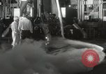 Image of Redstone Mercury Cape Canaveral Florida USA, 1961, second 46 stock footage video 65675021397