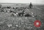 Image of 5th Marine Regiment France, 1918, second 13 stock footage video 65675021496