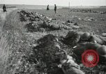Image of 5th Marine Regiment France, 1918, second 22 stock footage video 65675021496
