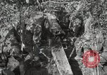 Image of 77th Field Artillery Unit France, 1918, second 50 stock footage video 65675021518