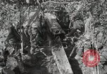 Image of 77th Field Artillery Unit France, 1918, second 52 stock footage video 65675021518