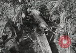 Image of 77th Field Artillery Unit France, 1918, second 53 stock footage video 65675021518