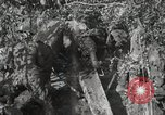 Image of 77th Field Artillery Unit France, 1918, second 54 stock footage video 65675021518