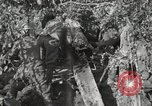 Image of 77th Field Artillery Unit France, 1918, second 58 stock footage video 65675021518