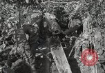 Image of 77th Field Artillery Unit France, 1918, second 59 stock footage video 65675021518