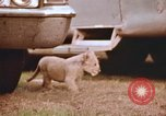 Image of Miller Johnson circus in the United States United States USA, 1974, second 44 stock footage video 65675021552