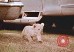 Image of Miller Johnson circus in the United States United States USA, 1974, second 45 stock footage video 65675021552