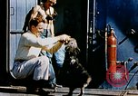 Image of food and medical services aboard USS Yorktown World War 2 Pacific Ocean, 1943, second 24 stock footage video 65675021555