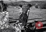 Image of American agriculture United States USA, 1939, second 22 stock footage video 65675021573