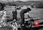 Image of American agriculture United States USA, 1939, second 23 stock footage video 65675021573