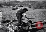 Image of American agriculture United States USA, 1939, second 24 stock footage video 65675021573