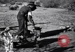 Image of American agriculture United States USA, 1939, second 26 stock footage video 65675021573