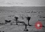 Image of American migrant farming agriculture United States USA, 1939, second 13 stock footage video 65675021574
