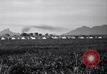 Image of cotton picking United States USA, 1939, second 9 stock footage video 65675021576