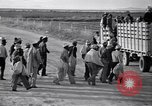 Image of cotton picking United States USA, 1939, second 36 stock footage video 65675021576