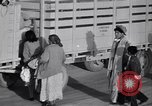 Image of cotton picking United States USA, 1939, second 48 stock footage video 65675021576