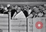 Image of cotton picking United States USA, 1939, second 51 stock footage video 65675021576
