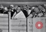 Image of cotton picking United States USA, 1939, second 52 stock footage video 65675021576