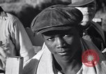Image of cotton picking United States USA, 1939, second 56 stock footage video 65675021576