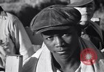 Image of cotton picking United States USA, 1939, second 57 stock footage video 65675021576