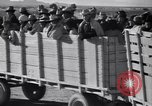 Image of cotton picking United States USA, 1939, second 61 stock footage video 65675021576