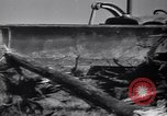 Image of Clearing trees for more farm land United States USA, 1939, second 10 stock footage video 65675021577