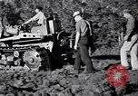 Image of Clearing trees for more farm land United States USA, 1939, second 17 stock footage video 65675021577