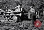 Image of Clearing trees for more farm land United States USA, 1939, second 18 stock footage video 65675021577