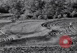 Image of American farm agriculture in 1930s United States USA, 1939, second 49 stock footage video 65675021581